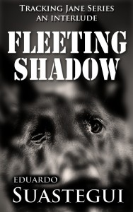 Fleeting Shadow, short story cover by Eduardo Suastegui