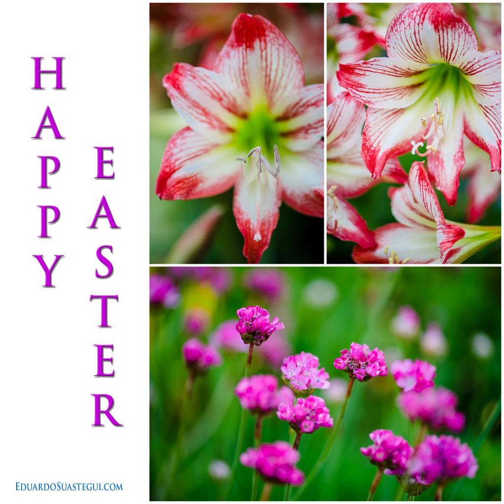 HappyEaster2016